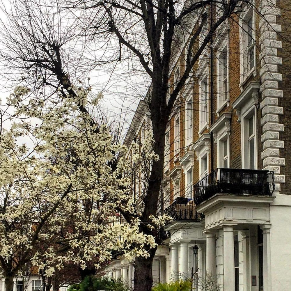 Spring nudging winter out of its way…  #england #london #springiscoming  (at Notting Hill)