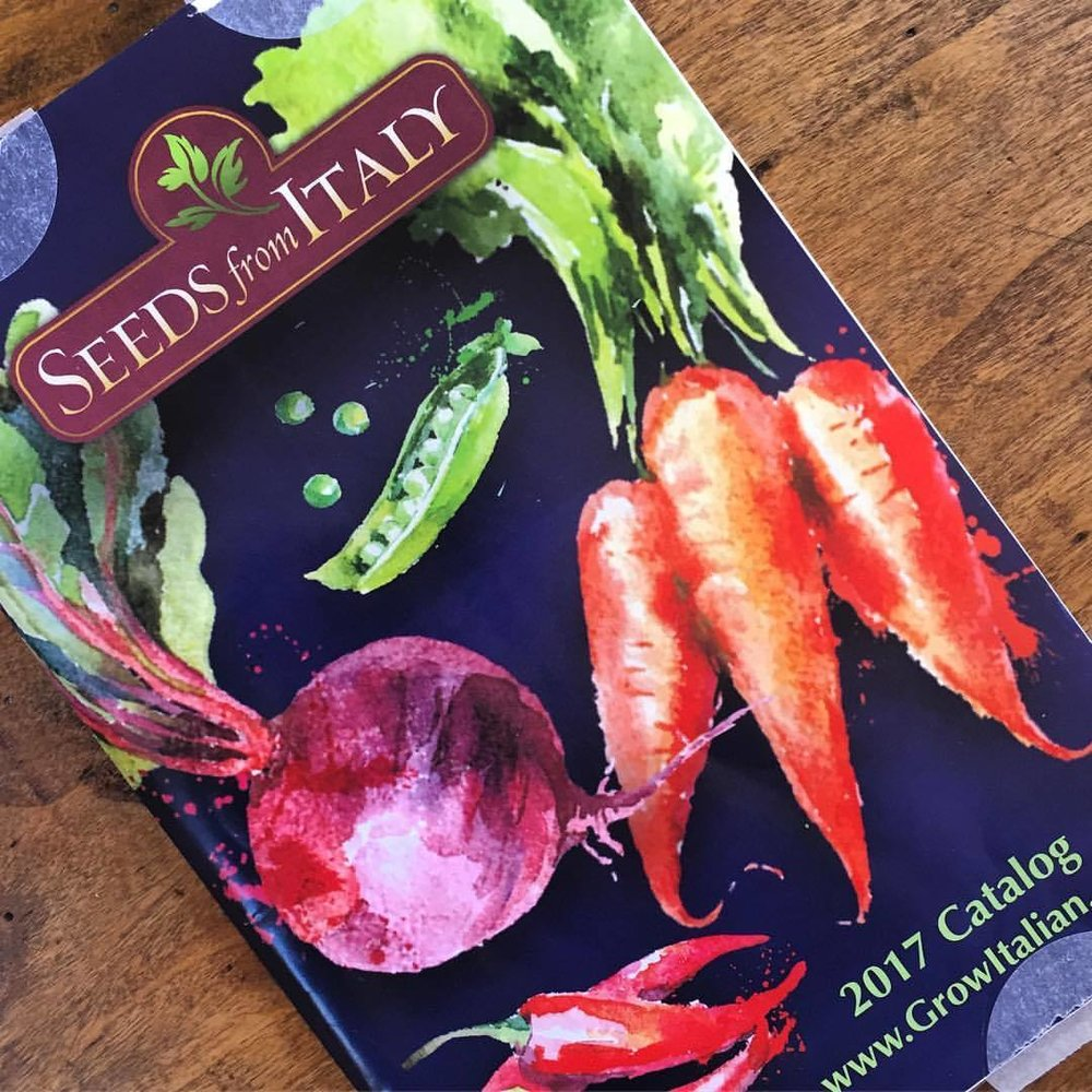 It's time!  #california #seed #garden #gardening  (at At Home in Napa)