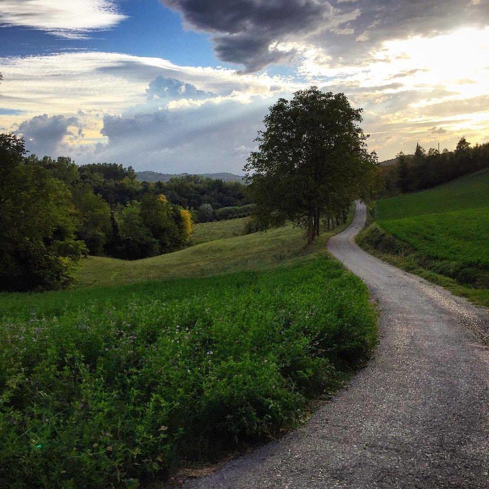 Evening walk.  #italy #piemonte #walkingoffcookies  (at Bossolasco)