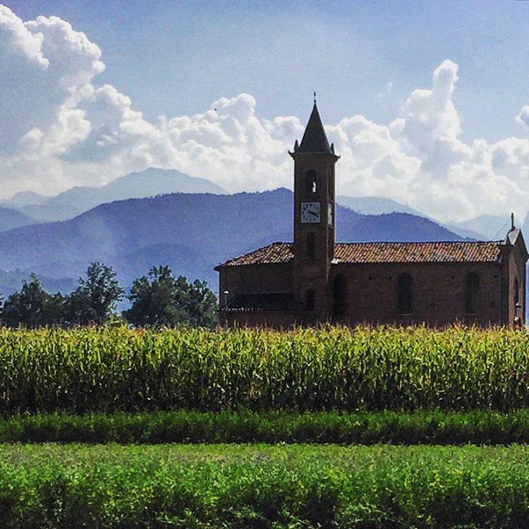 God's country.  #italy #piedmont #cornfield  (at Mondovì)
