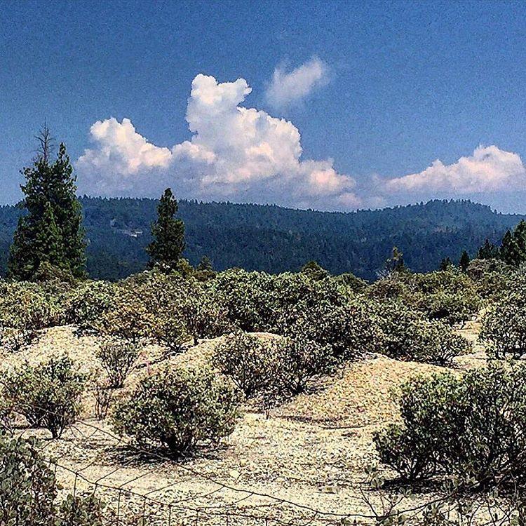 Dusty, hot and dry.  #california #silenceisgolden  (at Nevada City, California)