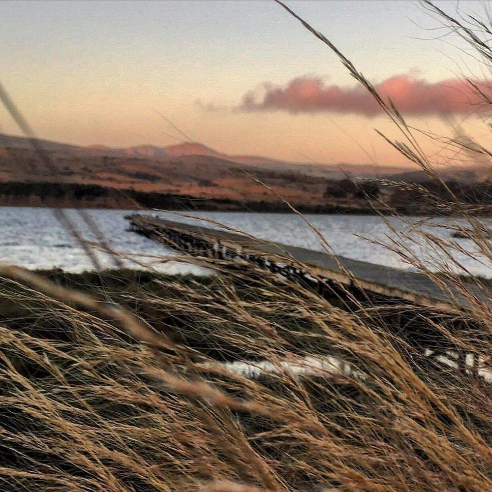 Tomales Bay.  #california #westmarin #pointreyes  (at Point Reyes National Seashore)
