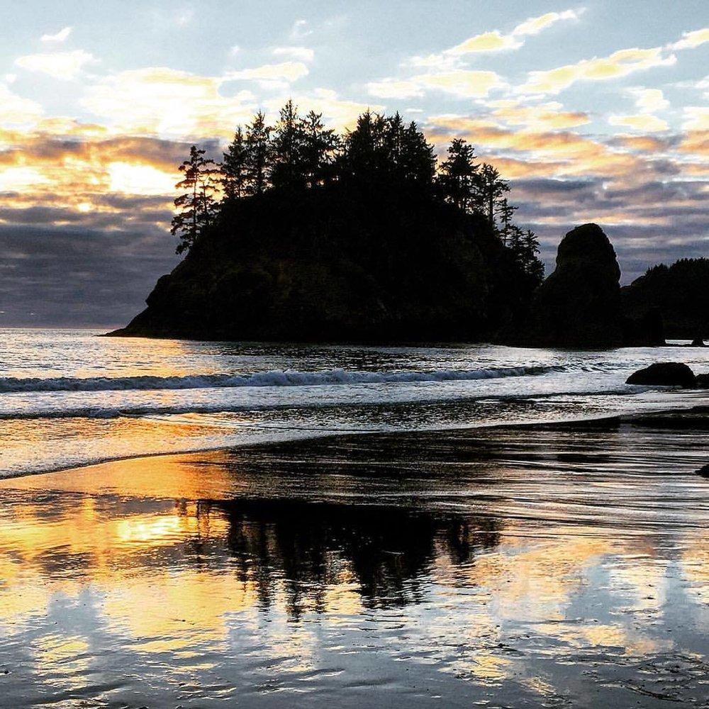 Small rocky islands dot California's coastline, home to conifers and seabirds and sea monsters.  #california #humboldt #summerroadtrip  (at Trinidad, California)