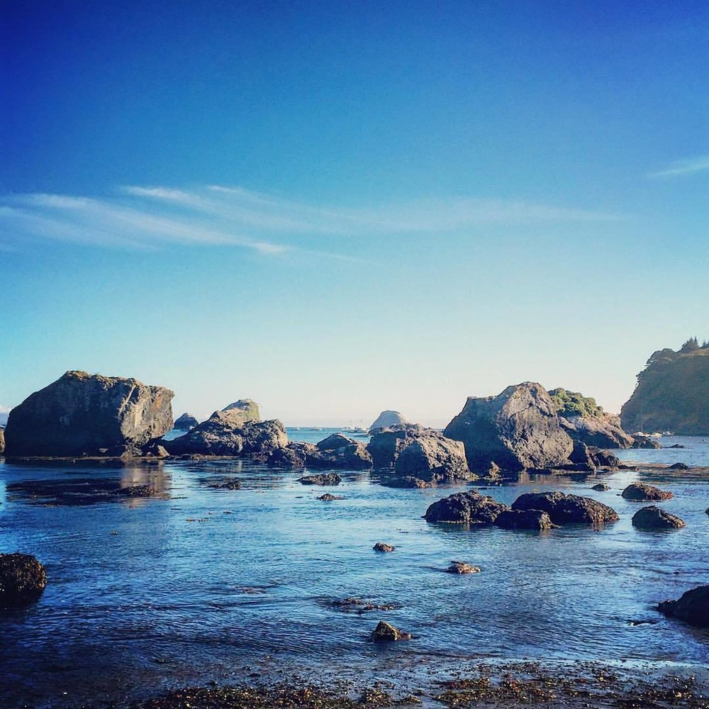 Rocky coastline.  #california #humboldt #summerroadtrip  (at Trinidad, California)