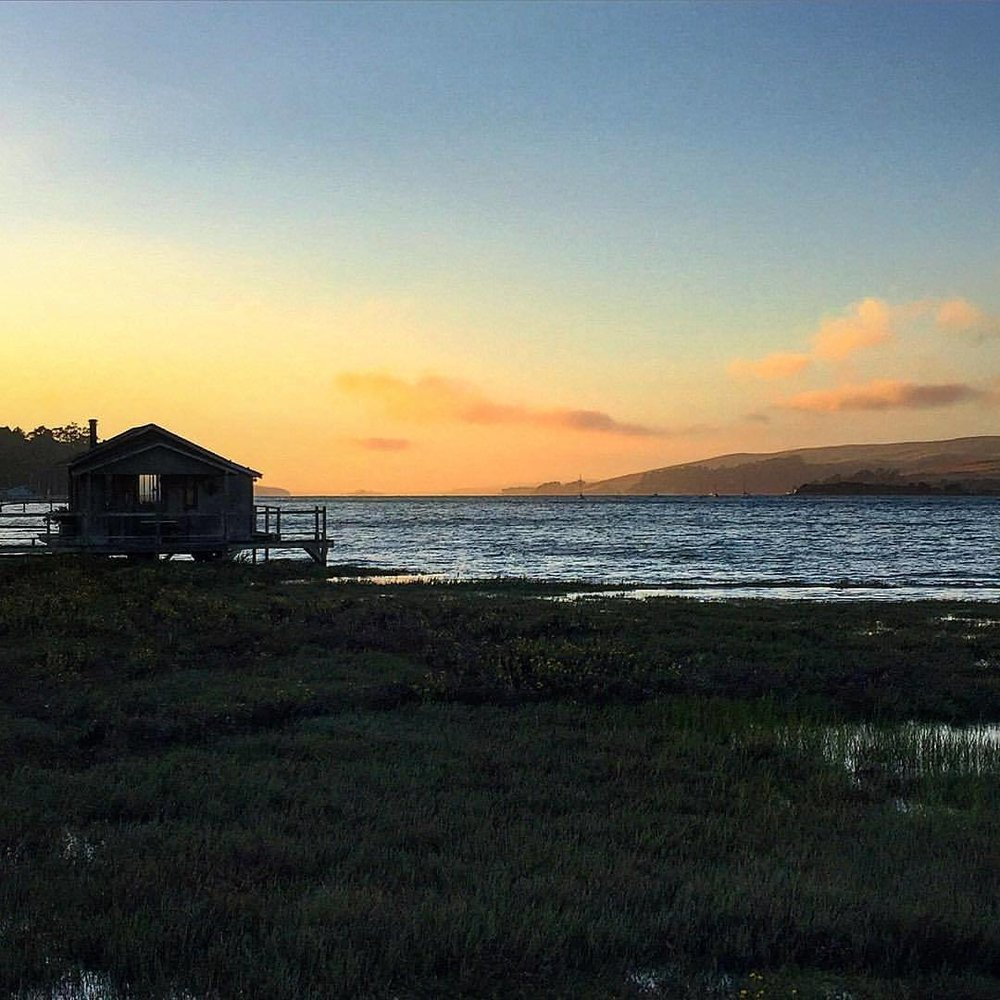 Dusk.  #california #inverness #tomalesbay  (at Point Reyes National Seashore)
