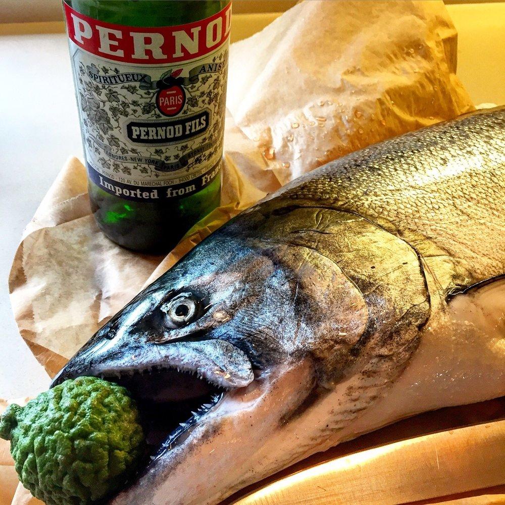 Pacific King salmon caught off the coast of Mendocino, California  #california #fishing #salmon #mendocino
