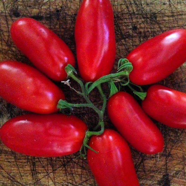 San Marzano tomatoes from the garden. (at at home in Napa)