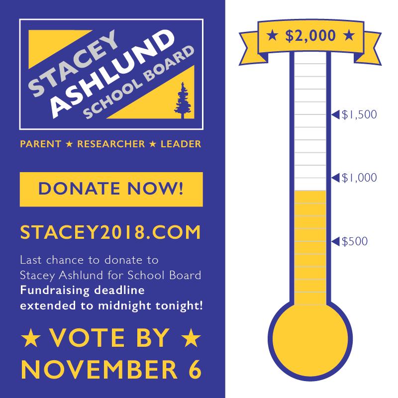 StaceyAshlund-Fundraiser.png