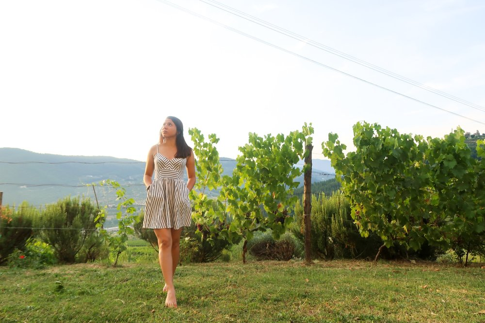 A SELFIE I TOOK WITH A TRIPOD IN SOME VINEYARDS