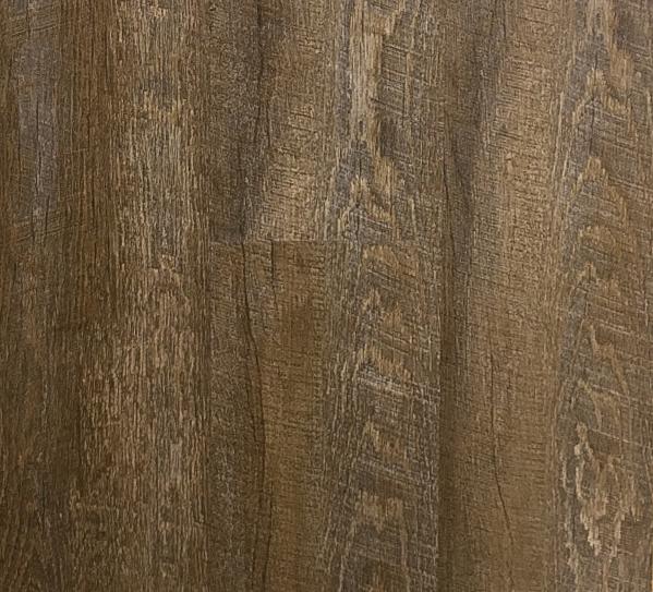 Anacapa Oak