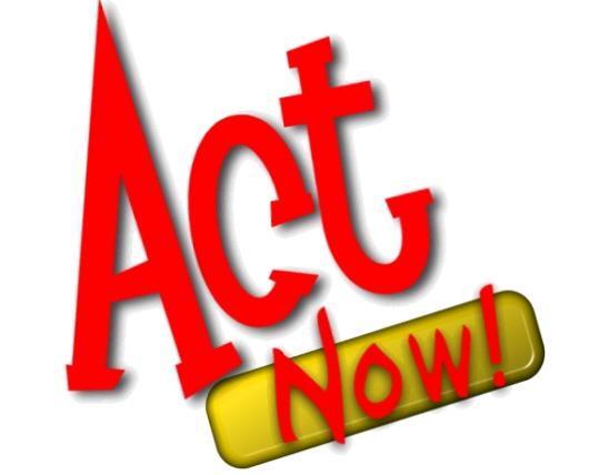 Act NowLogo_Fringe_Colour.jpg