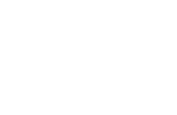 Wild Island Collective