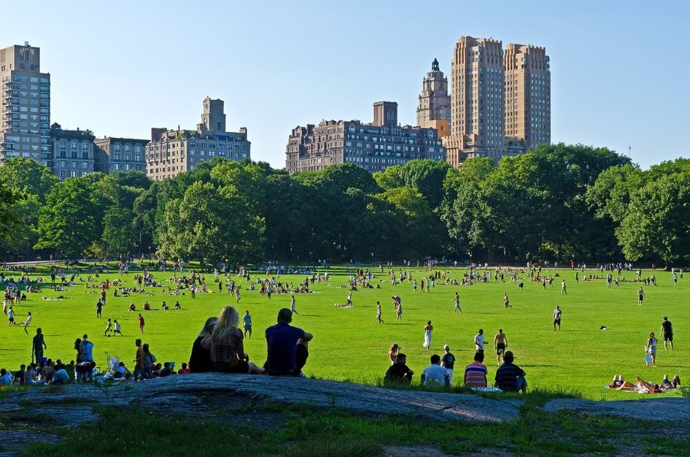 best_places_nyc_central_park_the_sitch2.jpg
