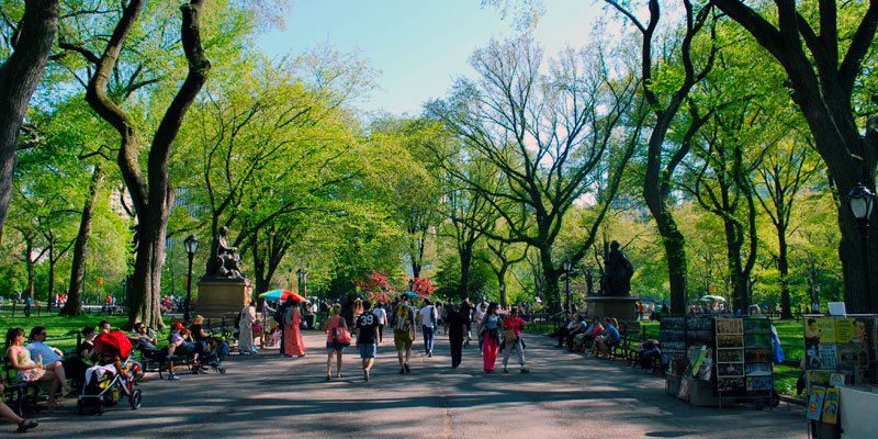 best_places_nyc_central_park_the_sitch3.jpg