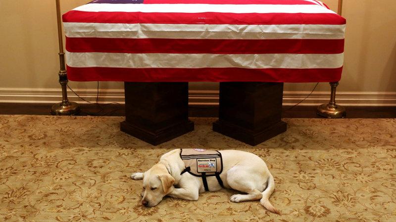 Photo courtesy of Evan Sisley/Office of George H.W. Bush/AP