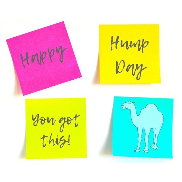 Just a little reminder - you got this! Happy Hump Day everyone! - - - #humpday #wednesday #media #news #thesitch #thesitchnews #thesitchculture #postit #yougotthis