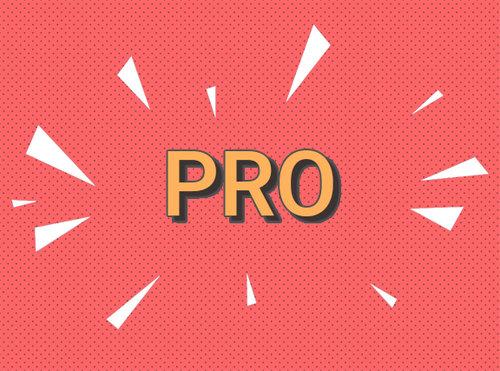 logo-pro.jpg