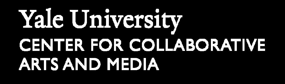 CCAM_Logo_White-01.png