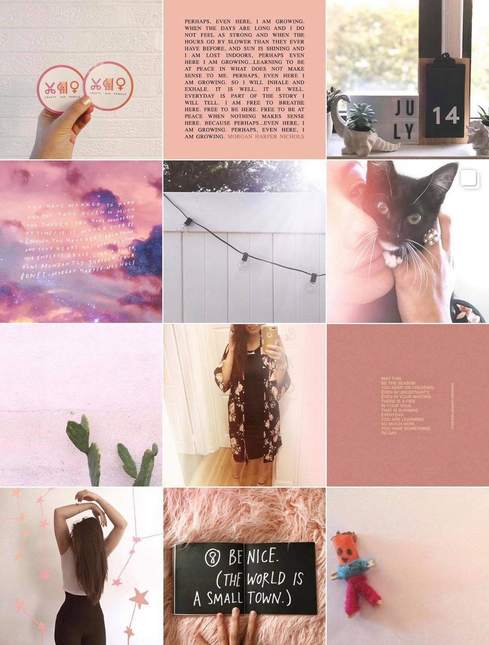 the instagram feed | Amanda Zampelli