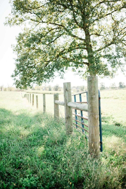 conley-ashley-lauren-photography-3241.jpg
