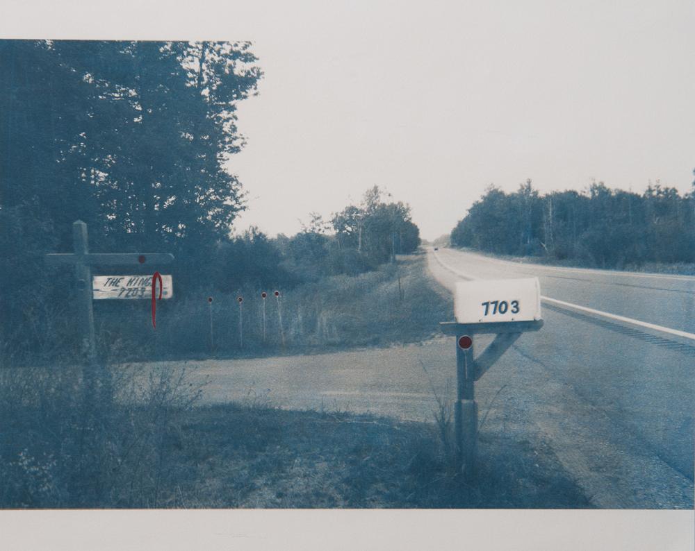 Jillian Piccirilli's cyanotype for  Robinwood