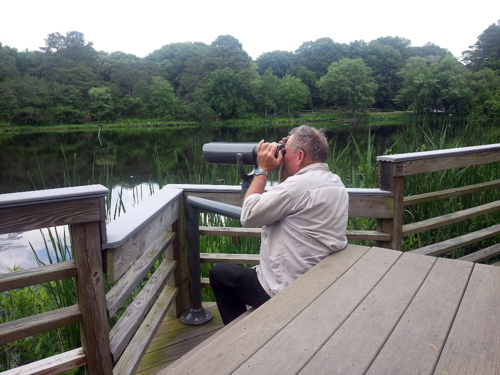 Schumaker Pond birding with Dad right outside the museum