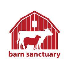 barn sanctuary.jpg