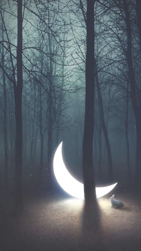 moon lite .jpg