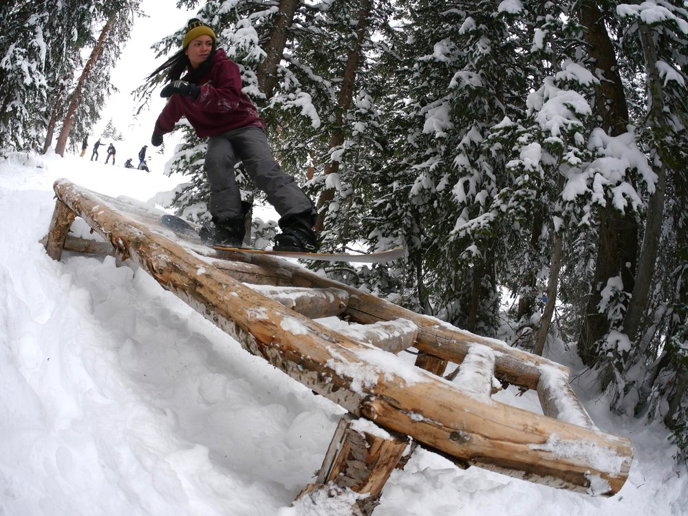 nirvana sw tailpress ladder log_tb.jpg