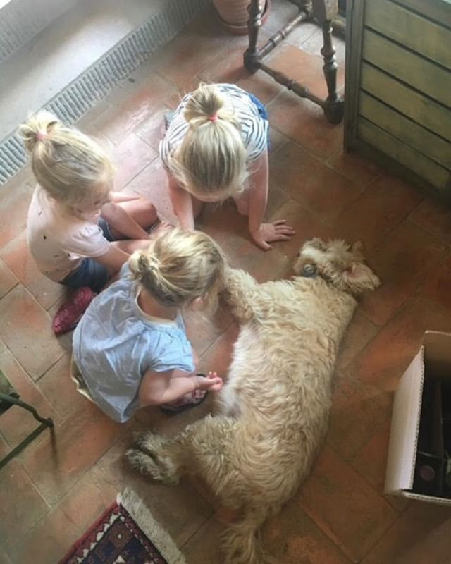 Afternoon at Via della stella: children playing with our dog Otello #viadellastella #agriturismoviadellastella