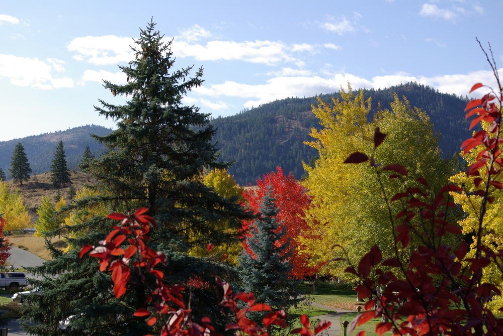 Winthrop Fall Colors  Oct  2008 078.jpg