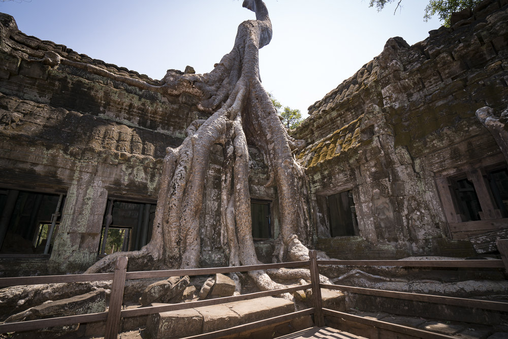 - The famous temple from the movie Tomb Raider. Cambodians love Angelina Jolie as she shot the movie here and adopted a young Cambodian boy, Maddox.