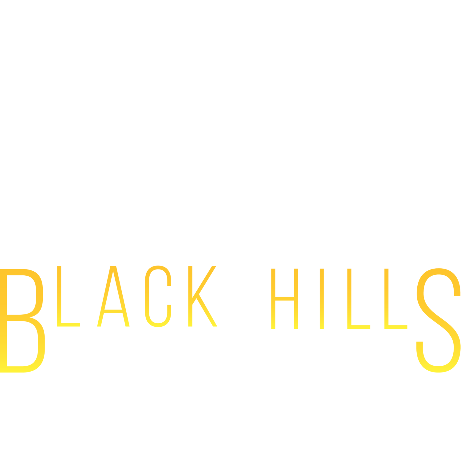 Black Hills Real Estate Photography
