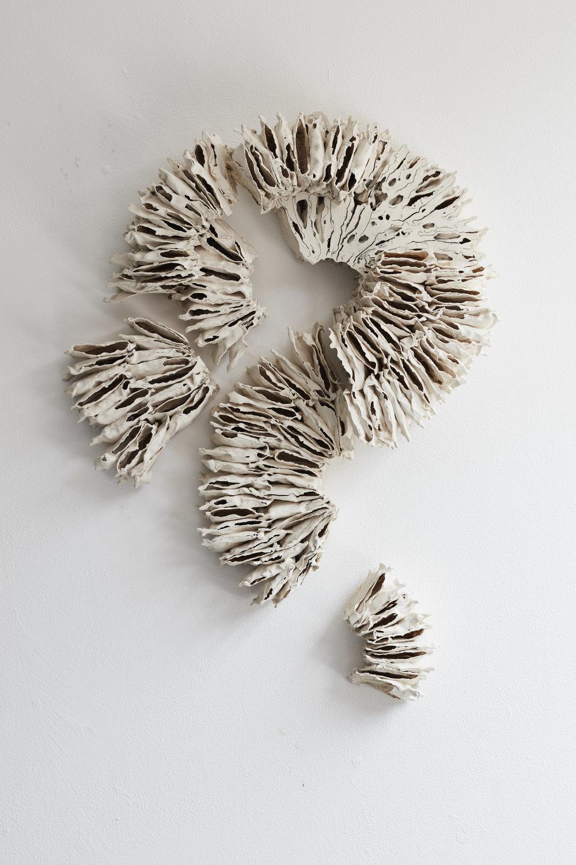 4.SophieKateCurran (2).jpg