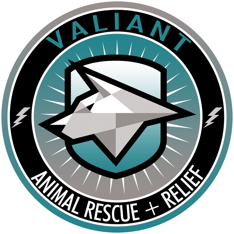 VARR_ANIMALRESCUE smLogo_Lamar copy.png