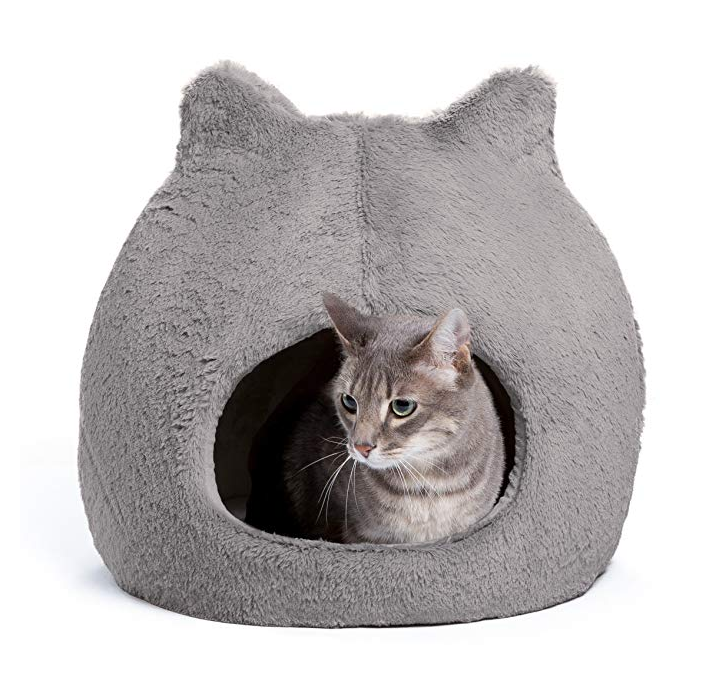 Cat Pod with Ears