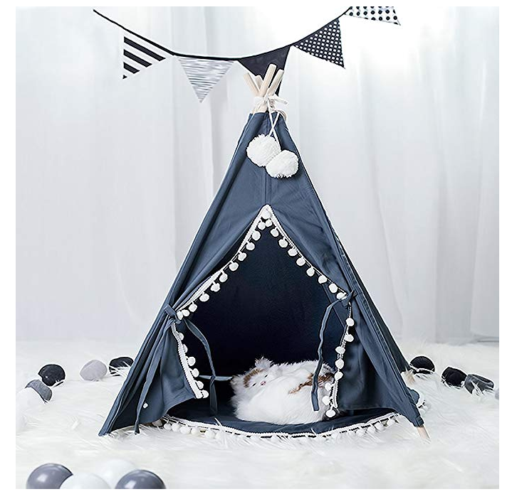 Blue and White TeePee