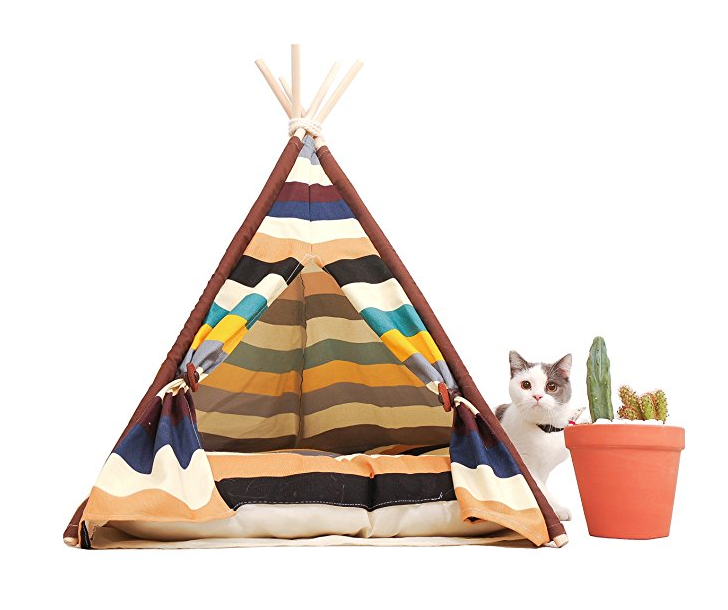 Beautiful Striped TeePee
