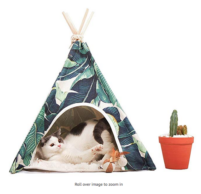 Tropical Pet Tent