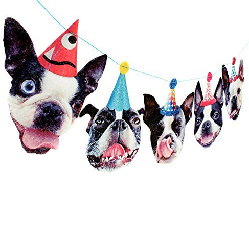 funny boston terrier party banner.png