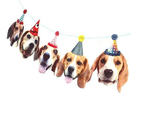 funny beagle party banner.png
