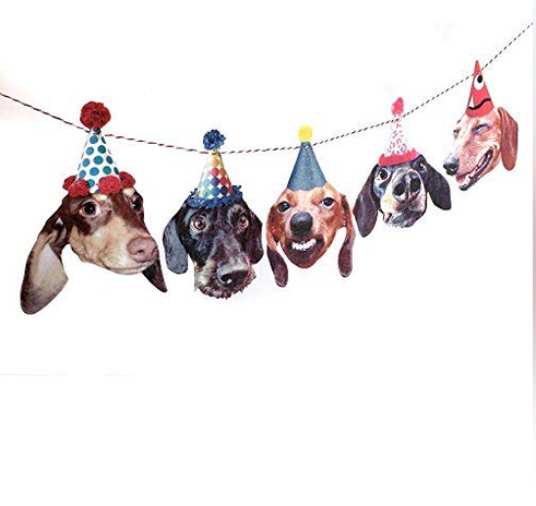 funny dachshund party banner.png