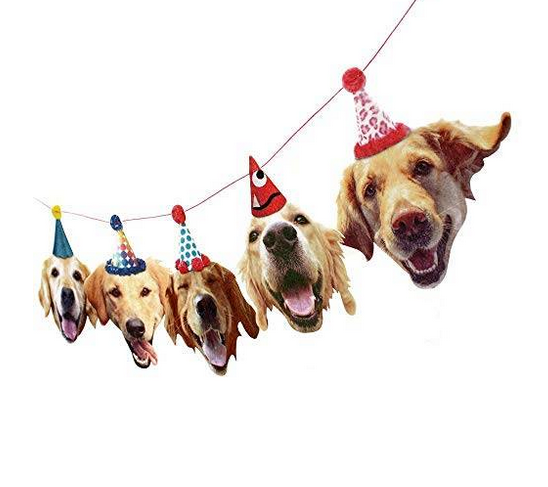 funny golden retriever party banner.png