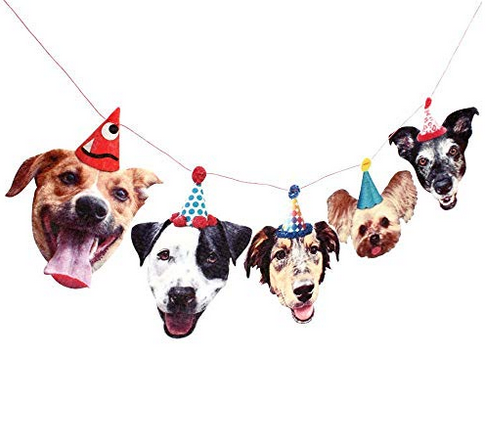 funny mutt dog party banner.png