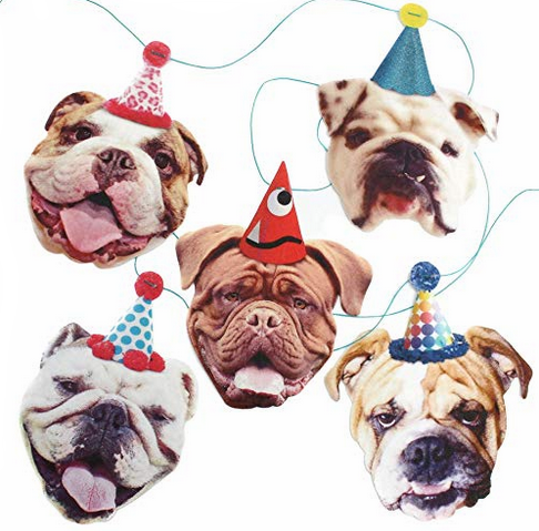 funny dog party banner.png