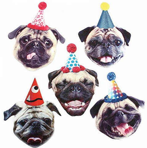funny pug party banner.png