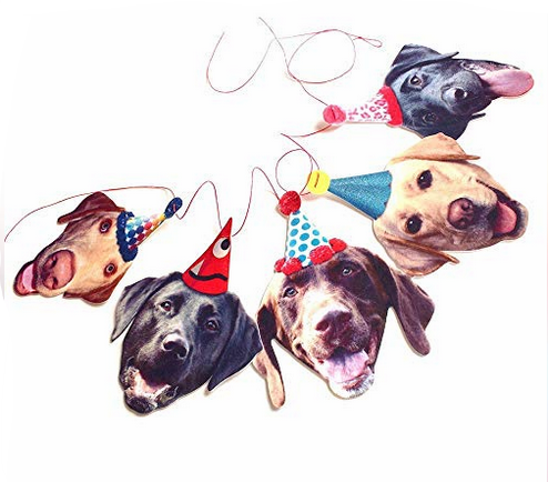 funny labs party banner.png
