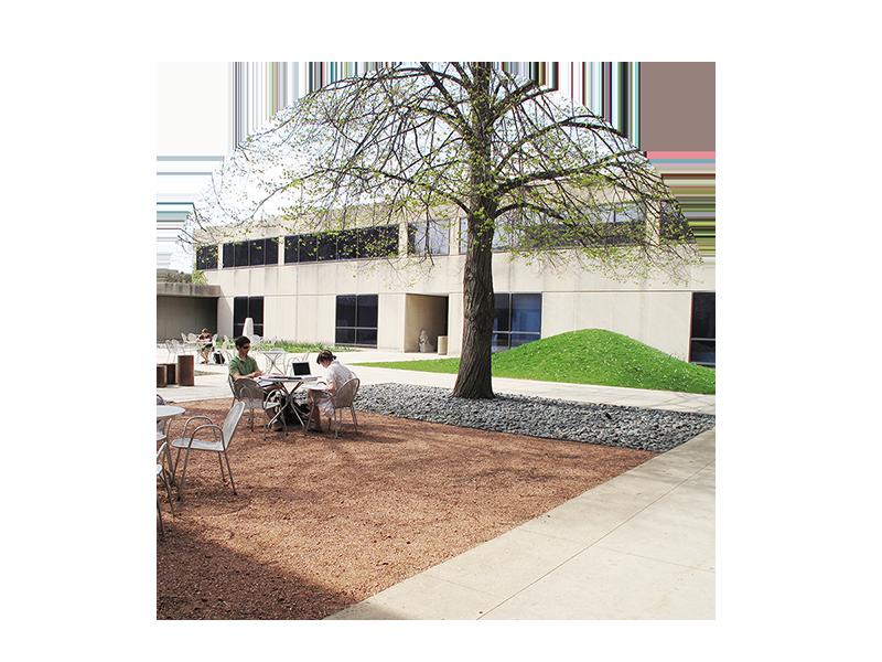 Smart Museum Courtyard