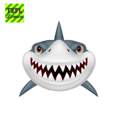Shark is coming.jpg