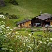 yoga retreat austria